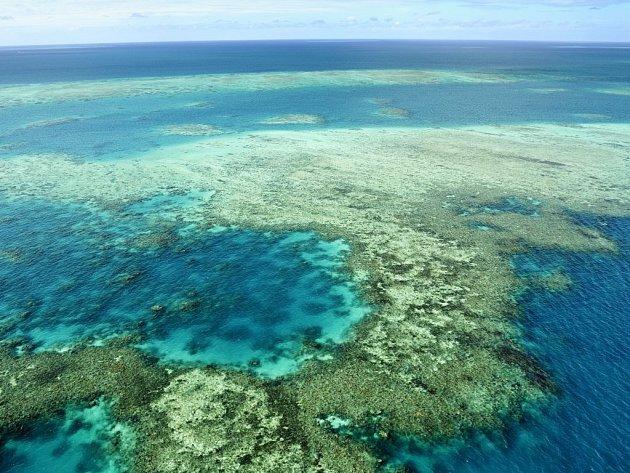 Velký bariérový útes v Austrálii je rájem potápěčů.