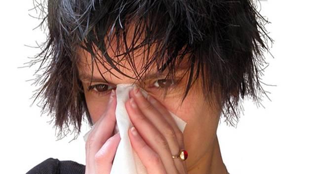 Loni trápila alergie 890 tisíc Čechů.