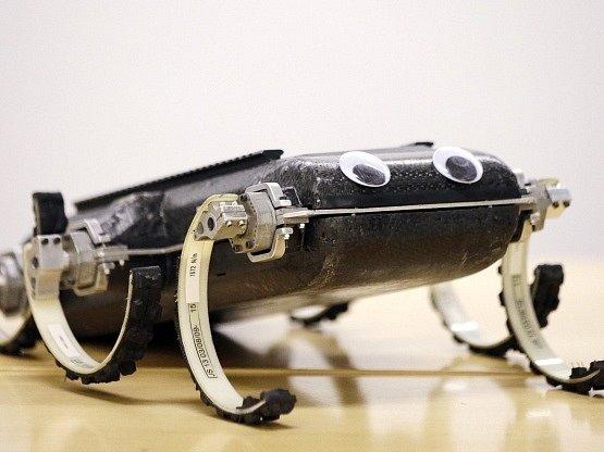 Robot X-RHex Lite