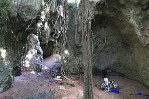Vykopávky na archeologickém nalezišti Panga ya Saidi v Keni