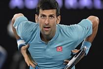 Novak Djokovič na Australian Open.