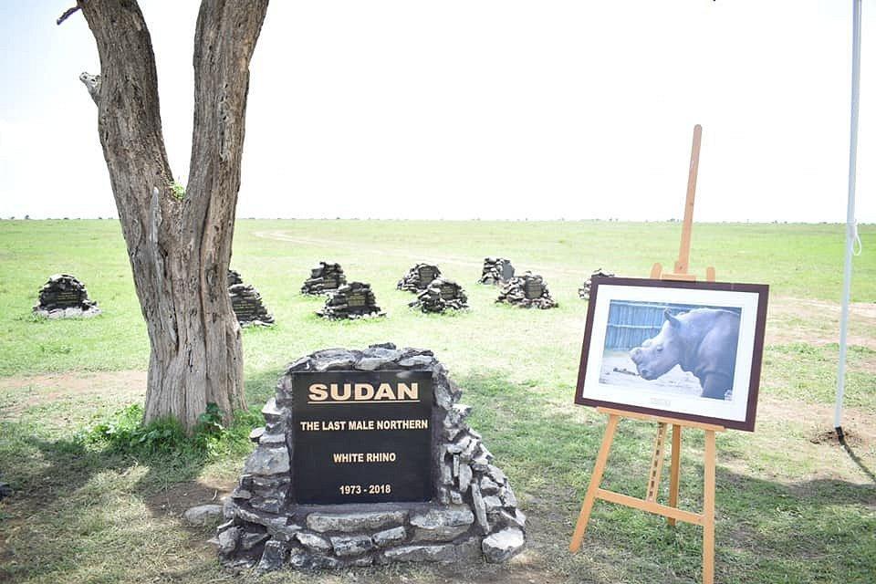 Rozloučení se Sudánem, posledním samcem nosorožce severního bílého.