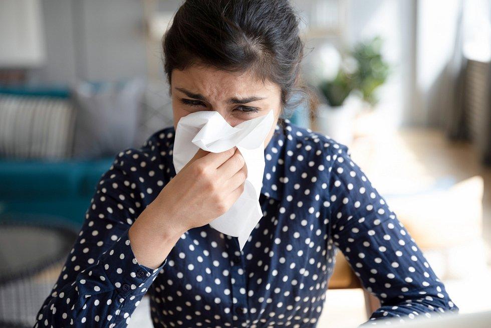 Kapesník je věrný společník alergiků a nemocných.