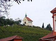 Vinice sv. Kláry v pražské Troji