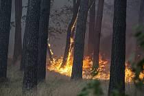Lesní požár - ilustrační foto.