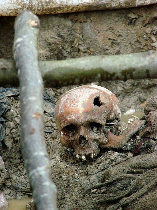 Lebka oběti masakru Srebrenica v červenci 1995. Exhumovaný hromadný hrob u obce Potočari, Bosna a Hercegovina, červenec 2007