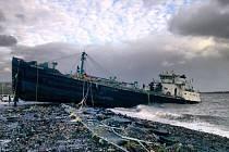 Rozběsněný živel zaplavil pobřežní oblasti USA až čtyřmetrovými vlnami, osm milionů domácností se ocitlo bez proudu a milion lidí se musel na pokyn úřadů uchýlit do bezpečnějších míst.