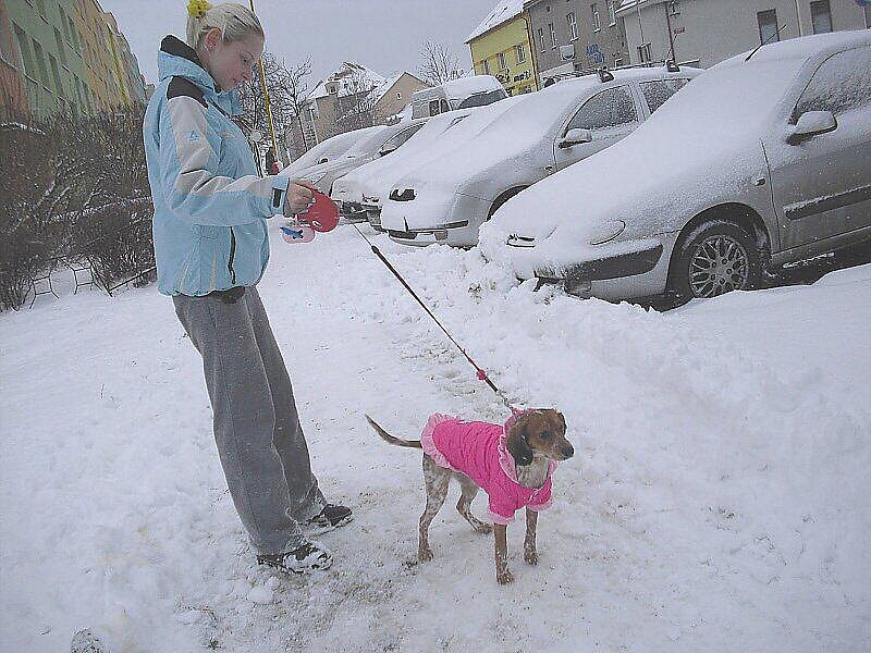 Na Příbramsku napadlo do středečního rána 26. ledna 2011 zase několik centimetrů sněhu. Teploty se pohybovaly kolem nuly. Meteorologové upřesnili předpověď počasí a kvůli proudění studeného vzduchu ze severu upozornili motoristy na ledovku a náledí.