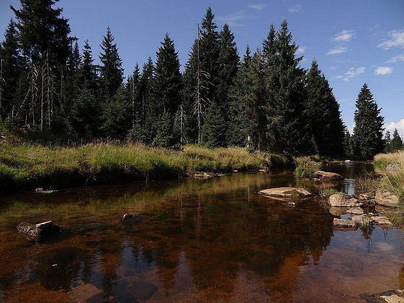 Rašeliniště Jizery. Národní přírodní rezervace se rozkládá na horním toku řeky Jizery. Na většině území vládne takzvaný bezzásahový režim, flóru i faunu ochranáři kompletně ponechávají samovolnému vývoji.