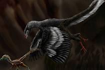 Umělecká rekonstrukce archaeopteryxe pronásledujícího mládě malého masožravého dinosaura compsognathuse