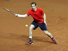 Brit Andy Murray na tréninku před finále Davis Cupu proti Belgii.