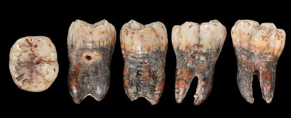 Před více než 90 lety se našel zub, jenž vypadal jako od neandertálského dítěte. Pak se ale na desítky let ztratil v soukromých sbírkách. Když se opět objevil, vzbudil senzaci