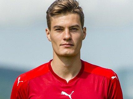 Patrik Schick, Česká republika