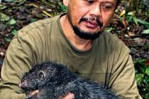 ZOOLOGOVÉ JÁSAJÍ. Pralesy Papuy Nové Guineje jsou jedním z mála míst, které ještě může překvapit neznámými tvory.