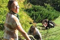 Díky grantu od Nadace Partnerství bude po celé České republice Hnutí Brontosaurus pořádat víkendové akce spojené s výsadbami stromů.