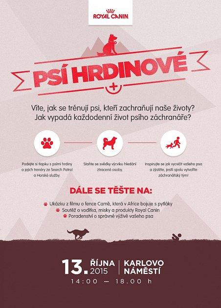 Záchranářští psi: tvrdě trénují proto, aby zachraňovali naše životy.
