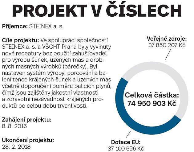 Steinex, projekt včíslech