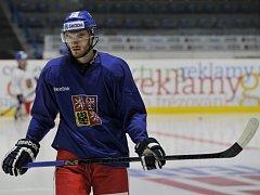 Hokejový reprezentant Tomáš Filippi.