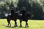 Koně policisté kupují kolem třech a až pěti let věku zvířat. A pak jde o to, jaké má konkrétní zvíře předpoklady, rodokmen, genetický základ.