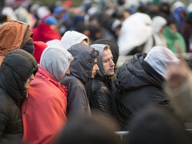 Do Švédska přišel letos rekordní počet přistěhovalců, o azyl jich během letošního roku požádalo již 86.223.  Ilustrační foto.