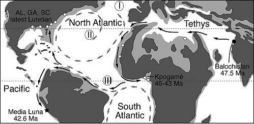 Trasa, po které se předchůdci velryb mohli dostat do dnešní Ameriky