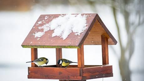 Vždy je lepší vyrobit klasickou šikmou střechu, na které se neudrží vyšší vrstva sněhu, kdyby vydatně sněžilo.