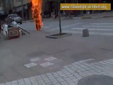 Tibetská organizace pro lidská práva zveřejnila na internetu video, které údajně zachycuje sebeupálení tibetské mnišky ze 3. listopadu.