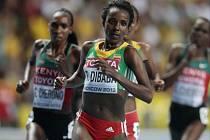 Běh na 10.000 metrů ovládla na MS v Moskvě favoritka Tiruneš Dibabaová z Etiopie.