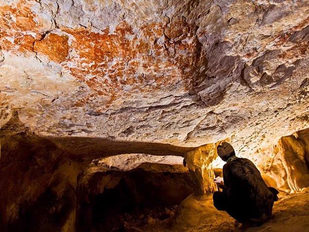 Nejstarší známá kresba zvířete byla nalezena v jeskyni na Borneu.