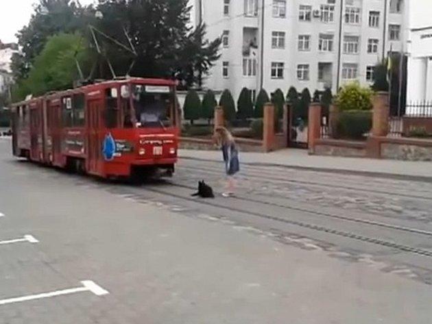 Z klidu ho nevyvedli ani těsně kolem něj projíždějící auta, ani tramvaj, která přijela k němu tak blízko, že jej málem přejela.