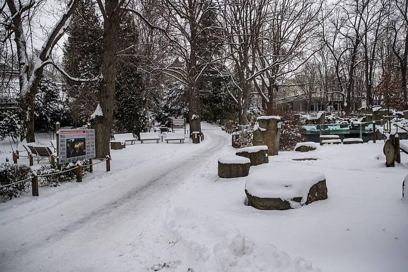 I když po návštěvnících není v areálu zoo ani památka, cesty jsou udržované.