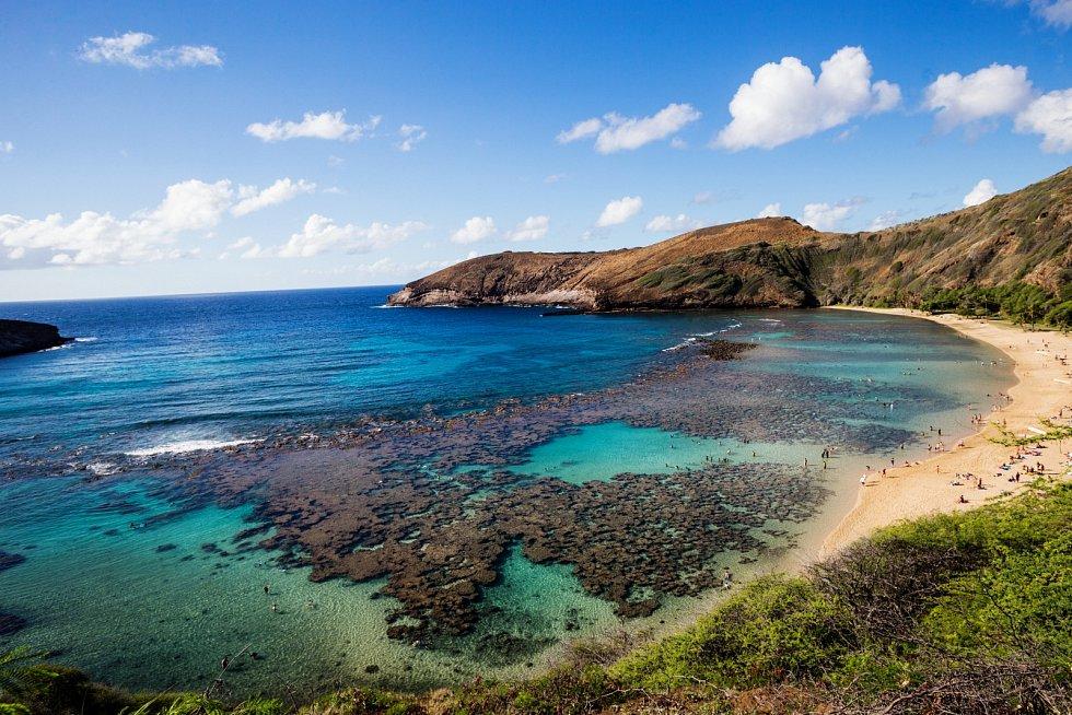Korálový útes v zátoce Hanauma na jižním pobřeží Oahu na Havaji.