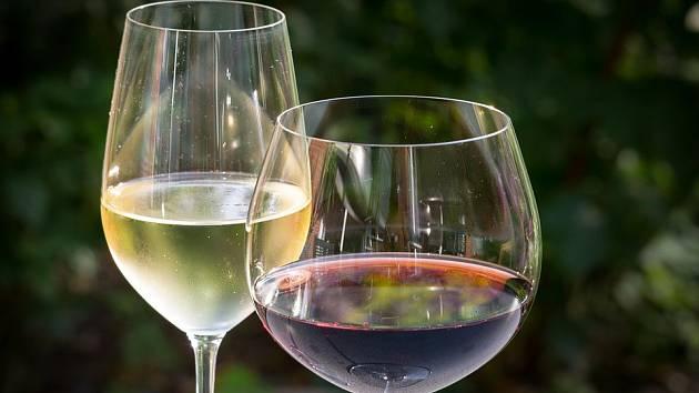 Terroir vín: Nejlepší vzorek hroznů? Dornfelder Pavla Matouše z Olbramovic