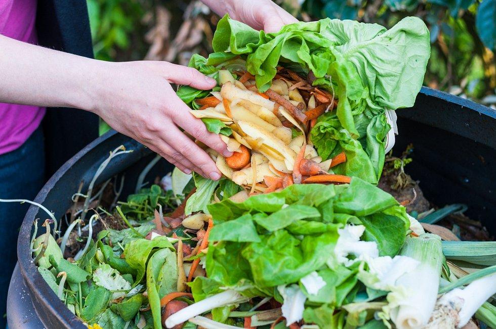 Na každého obyvatele připadá v průměru 121 kilo vyplýtvaných potravin za rok.