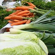 Česká Státní zemědělská a potravinářská inspekce (SZPI) zahájila v tuzemských obchodech kontrolu salátových okurek a namátkově i další zeleniny původem ze Španělska. Důvodem je smrtící střevní infekce, která vypukla v Německu.