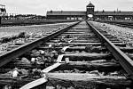 Vyhlazovací tábor Auschwitz
