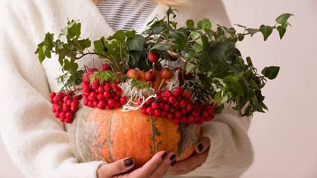 Suché šípky, jeřabiny, vřes, živé nebo sušené květiny, barevné listí. Podzimní zahrada nabízí nepřeberné možnosti pro vazby, v nichž využijete i různé plody dýní.