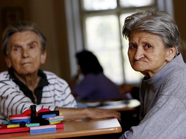 Alzheimerova choroba postihne průměrně každého 20.člověka staršího 65let, přičemž má na svědomí zhruba polovinu všech případů stařecké demence. (Ilustrační snímek)