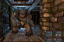 Počítačová hra Legend of Grimrock.