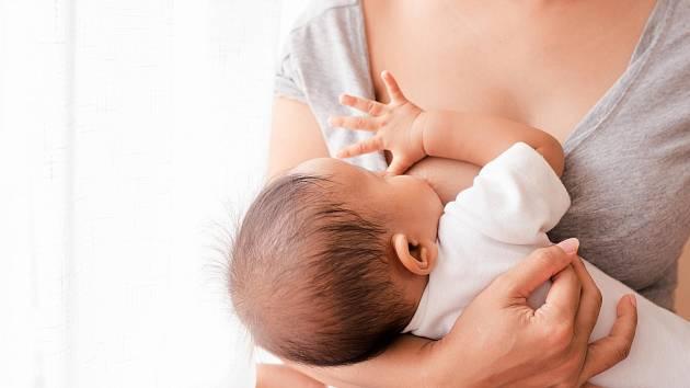 Podpora kojení je u nás nedostatečná. Podle výzkumů při propuštění z porodnice kojí výlučně jen každá druhá matka.