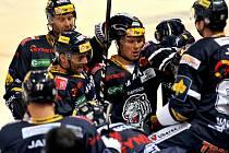Hokejisté Liberce se radují z gólu.