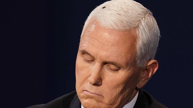 Americký viceprezident Mike Pence během debaty s mouchou na hlavě, 7. října 2020.