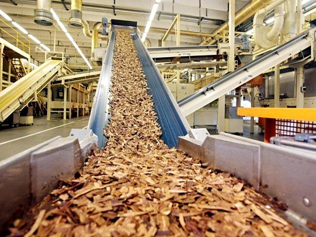 Dopravník s tábákem, který je zpracováván ve výrobních halách společnosti Philip Morris ČR v Kutné Hoře.