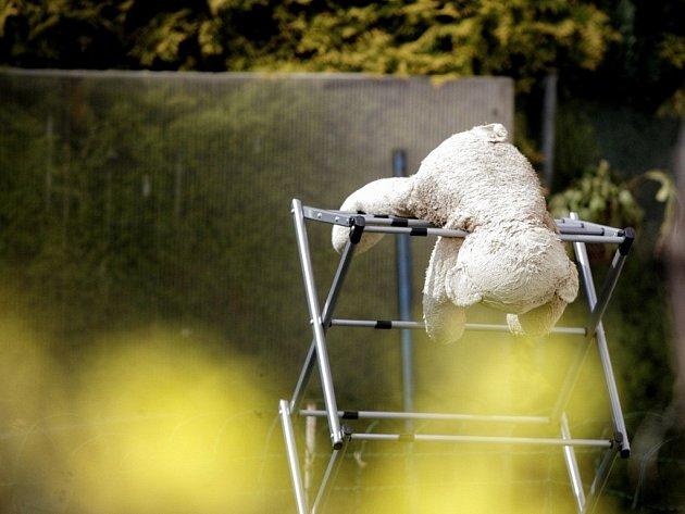 Medvídkova jarní kocovina.