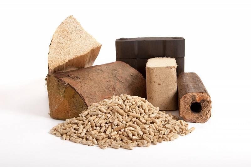 Při nákupu dřeva si ověřte původ a jakost.