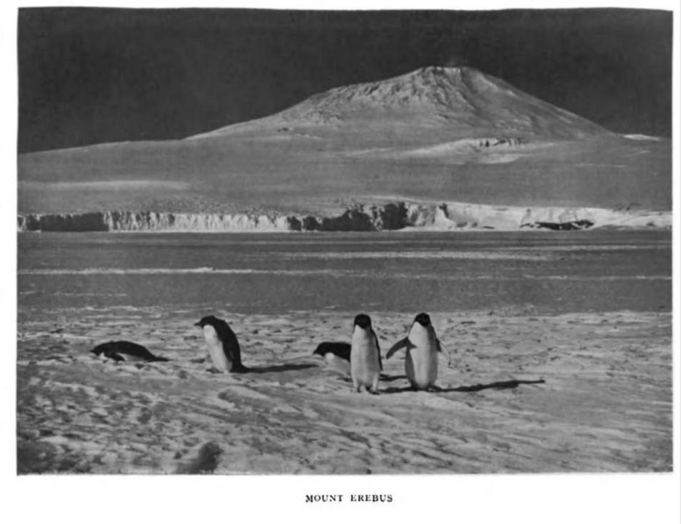 Sopka Mount Erebus, Rossův ostrov, Antarktida