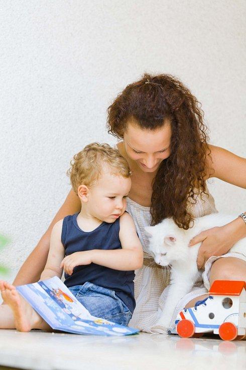 domácí mazlíčci, ilustrační foto