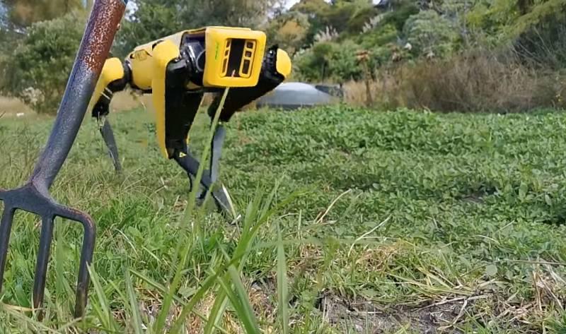 Roboty mohou být vybaveny mnoha senzory pro hodnocení okolí