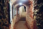 Pod Brnem se nachází výjimečný labyrint podzemních chodeb, štol, tunelů, krypt a sklepů.