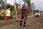 Energetici opravují vedení strhané stromy, které neodolaly silnému větru. Ilustrační foto